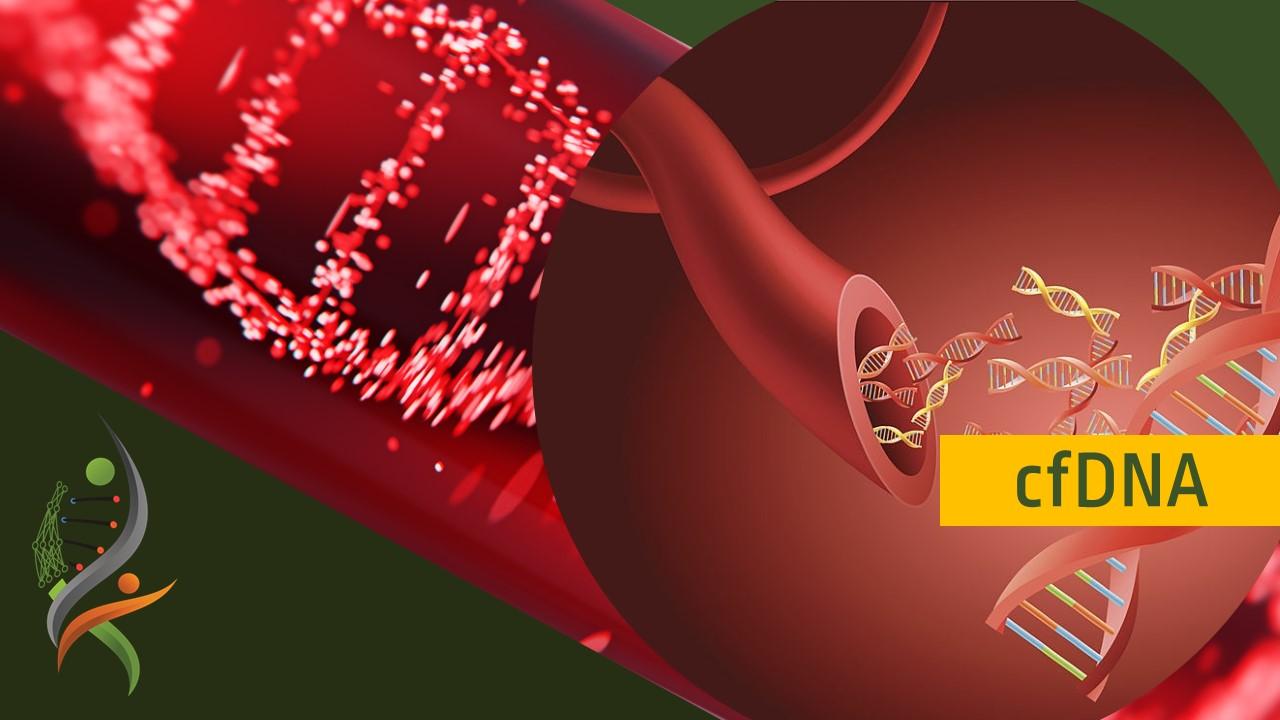 GTC Liquid Biopsy Hematology Profile | Genomic Testing