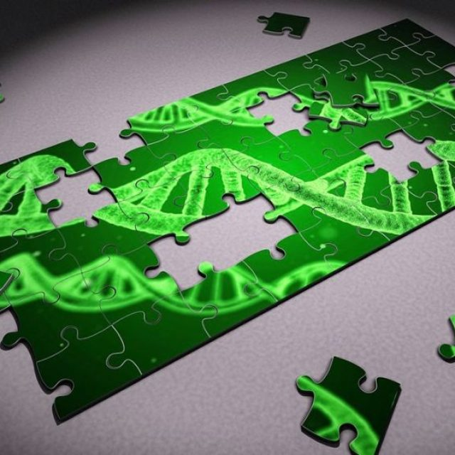 Study shows that RNA Plus DNA profiling significantly enhanced Drug Matching