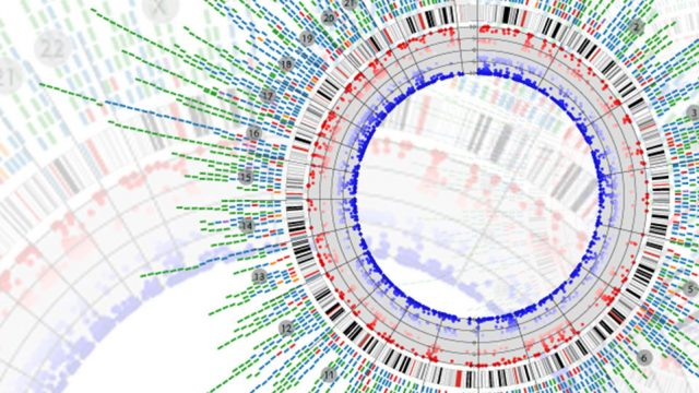 Chimerism Analysis of Cell-Free DNA